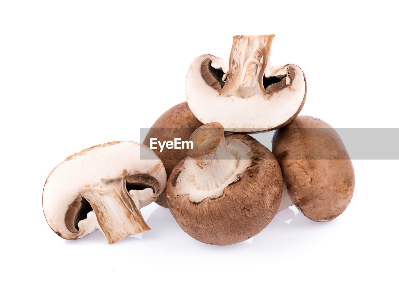 Close-up of mushrooms against white background