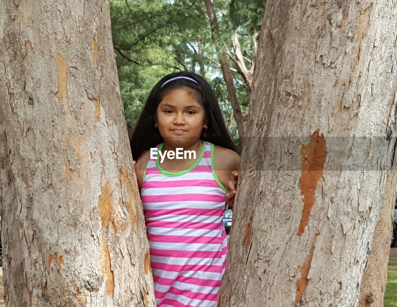 Portrait Of Girl Standing Against Tree Trunks At Park