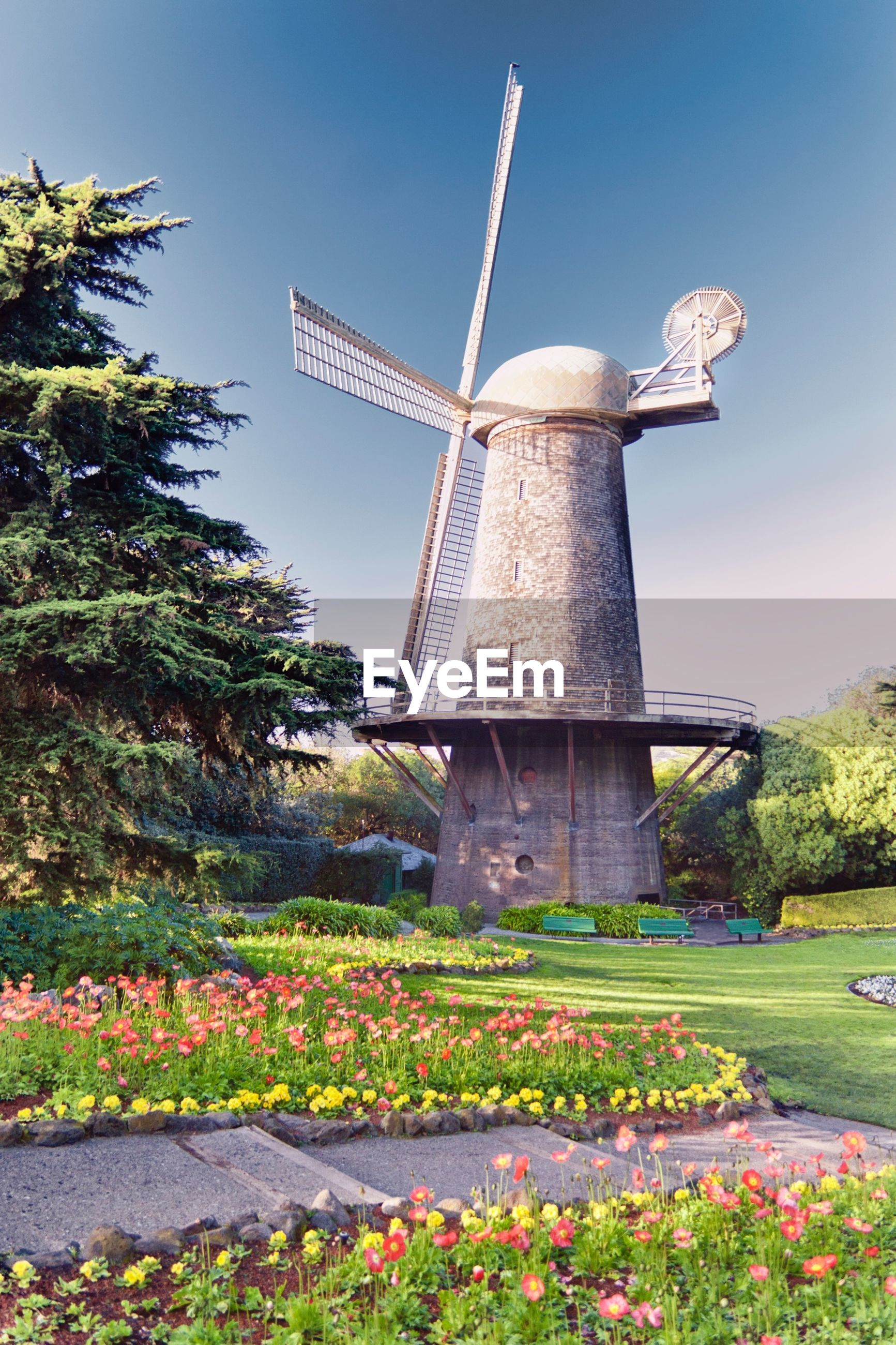 Traditional Windmill In Garden