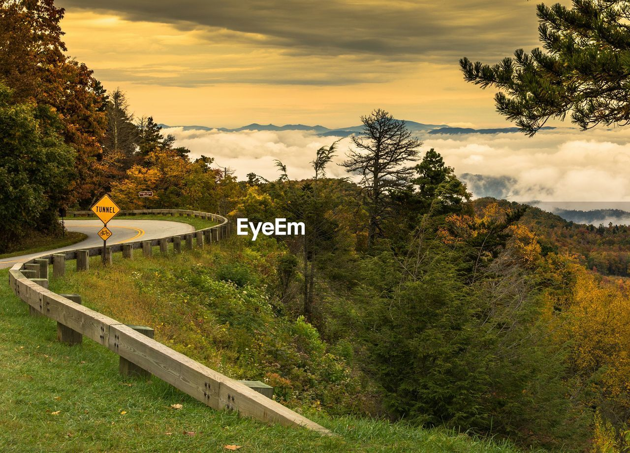 High angle view of autumn trees by mountain road during sunset