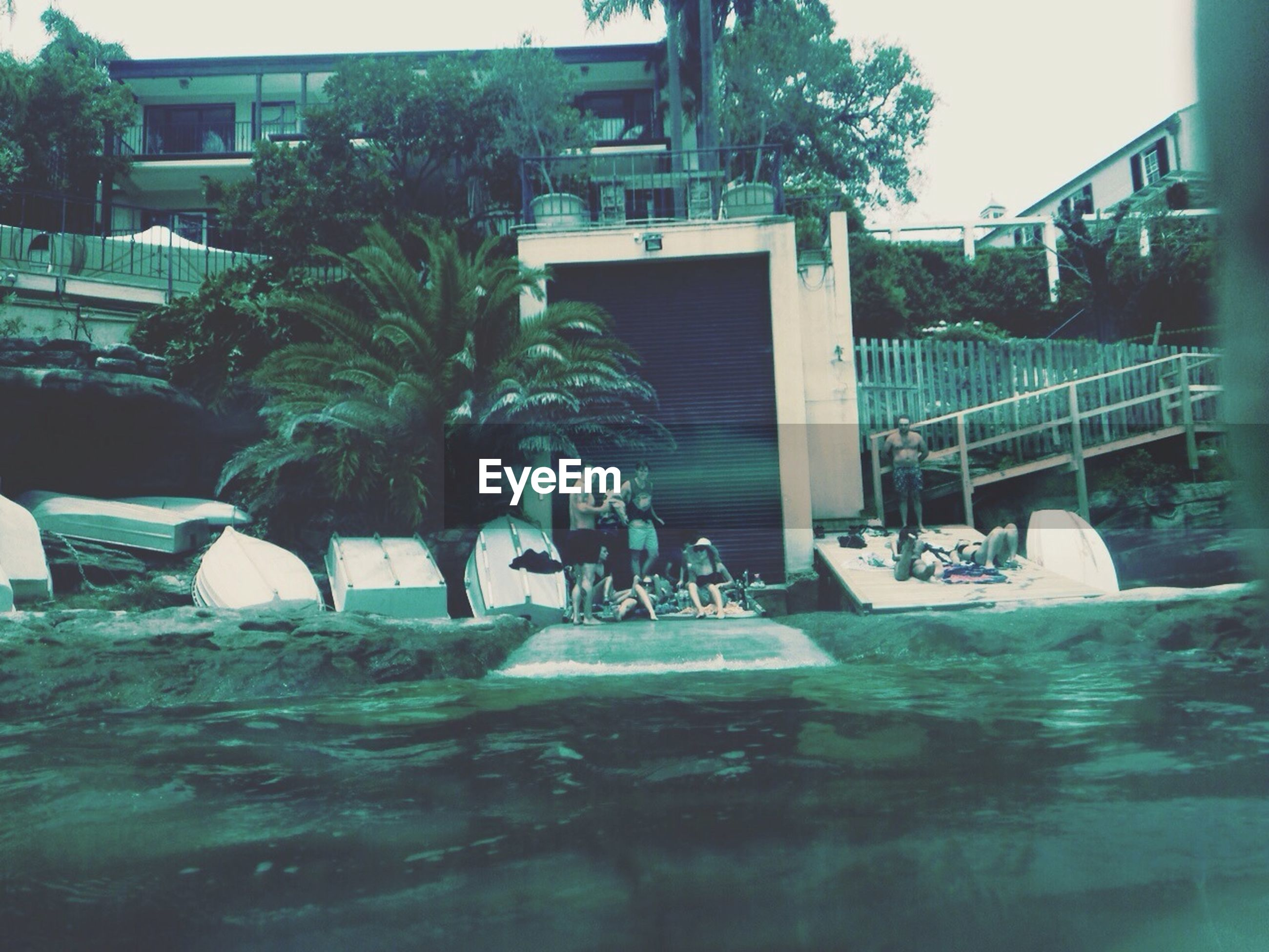 water, built structure, tree, architecture, building exterior, animal themes, waterfront, swimming pool, reflection, day, outdoors, nature, house, relaxation, pond, swimming, men, sunlight, plant