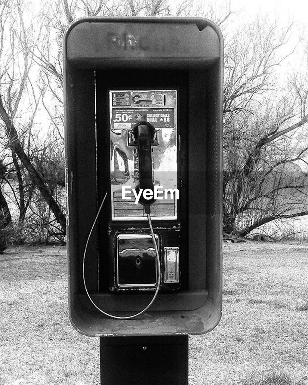 communication, old-fashioned, connection, technology, telephone, retro styled, day, bare tree, pay phone, outdoors, tree, telephone receiver, no people, telephone booth, close-up