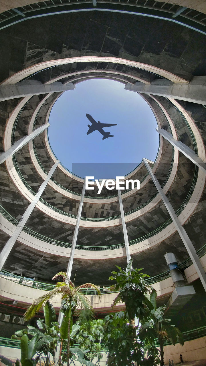 low angle view, architecture, built structure, plant, no people, day, sky, flying, building exterior, mid-air, nature, air vehicle, airplane, animal themes, animal, building, tree, outdoors, bird, vertebrate, directly below, ceiling