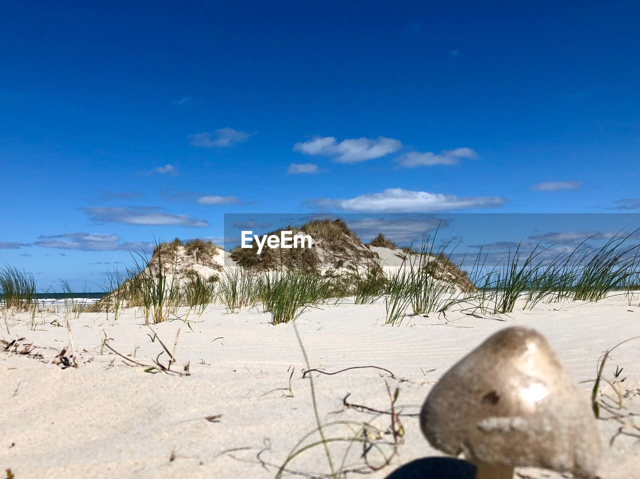 sky, land, nature, scenics - nature, cloud - sky, tranquility, beauty in nature, plant, day, sunlight, no people, tranquil scene, sand, snow, beach, landscape, field, environment, blue, outdoors, marram grass, snowcapped mountain