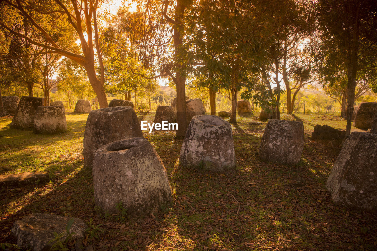 tombstone, ancient, history, stone material, cemetery, memorial, travel destinations, no people, day, religion, spirituality, old ruin, grave, outdoors, ancient civilization, tree, nature