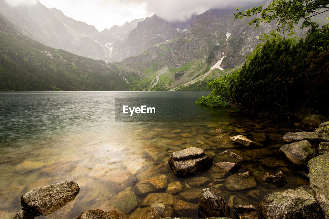 water, mountain, beauty in nature, rock, solid, scenics - nature, rock - object, nature, tranquility, lake, day, tranquil scene, no people, non-urban scene, mountain range, idyllic, outdoors, plant, flowing water, shallow, flowing, mountain peak