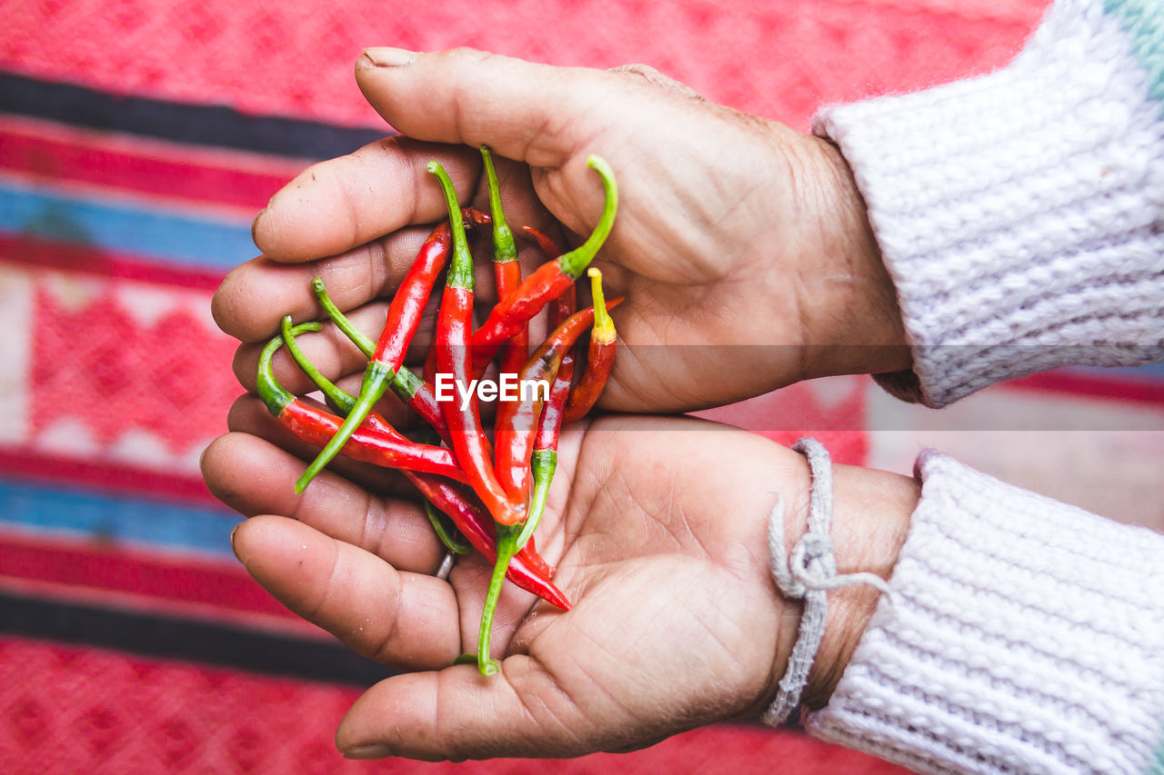 Cropped Hands Holding Red Chili Peppers