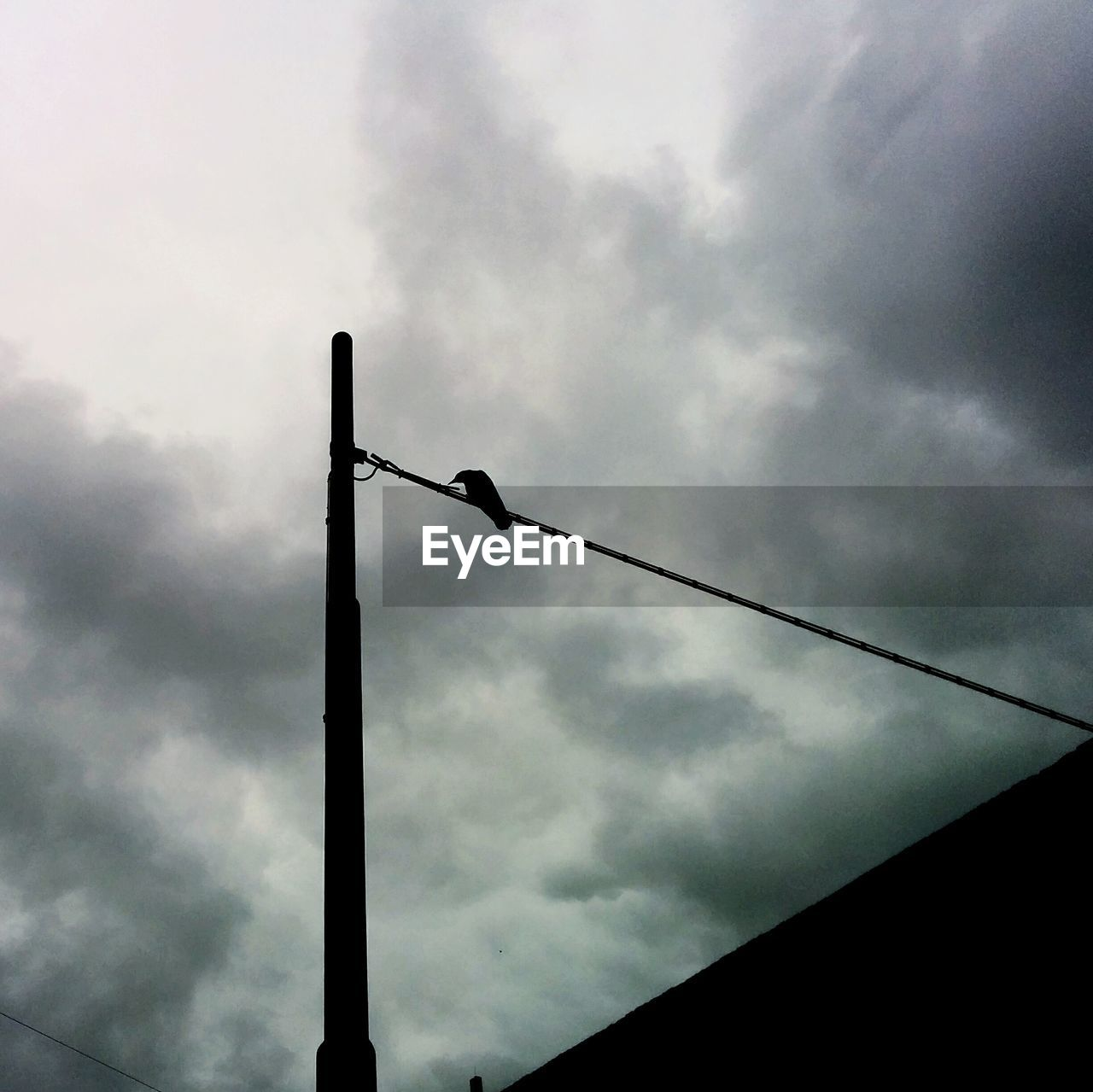 Low angle view of bird perching on pole against cloudy sky