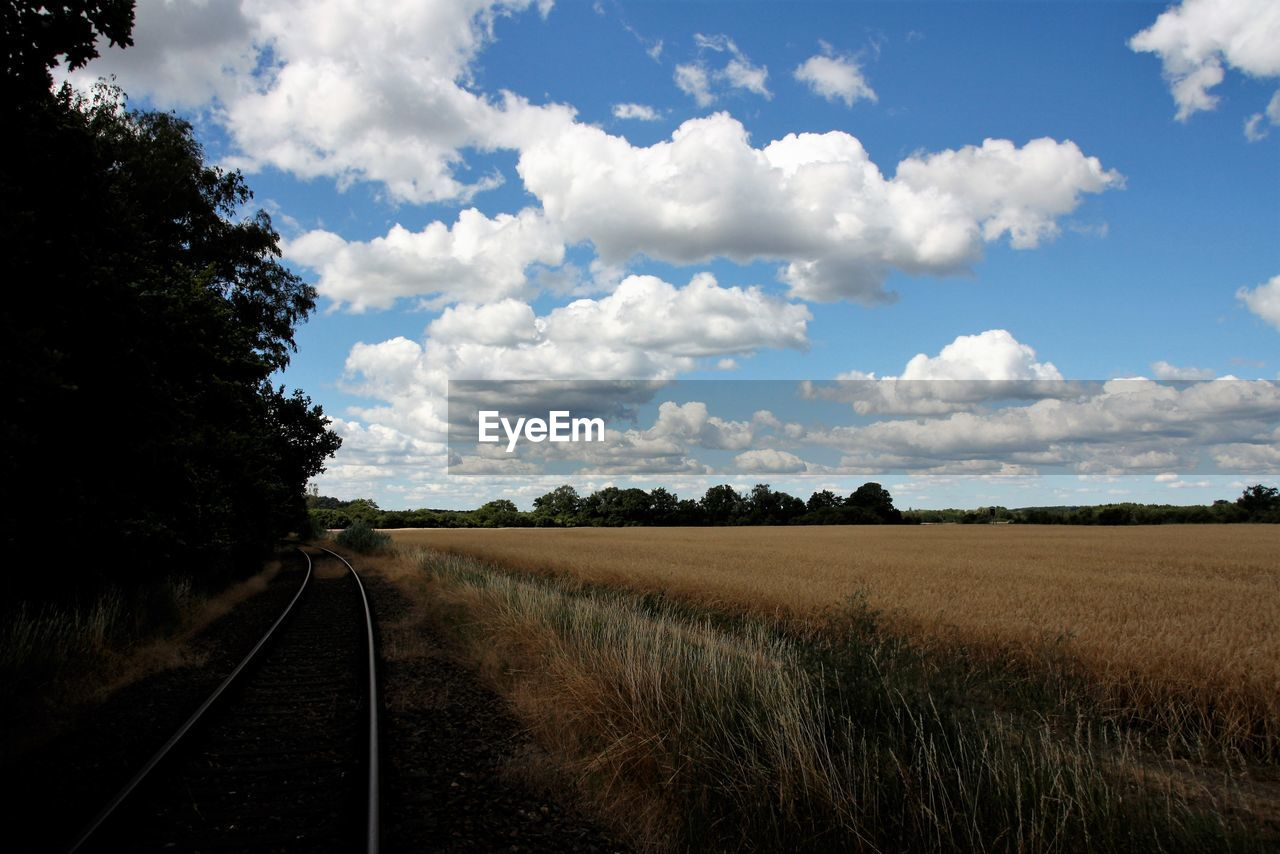 sky, plant, cloud - sky, field, landscape, environment, land, transportation, tree, nature, beauty in nature, no people, scenics - nature, growth, rail transportation, tranquil scene, tranquility, direction, day, the way forward, track, diminishing perspective, outdoors