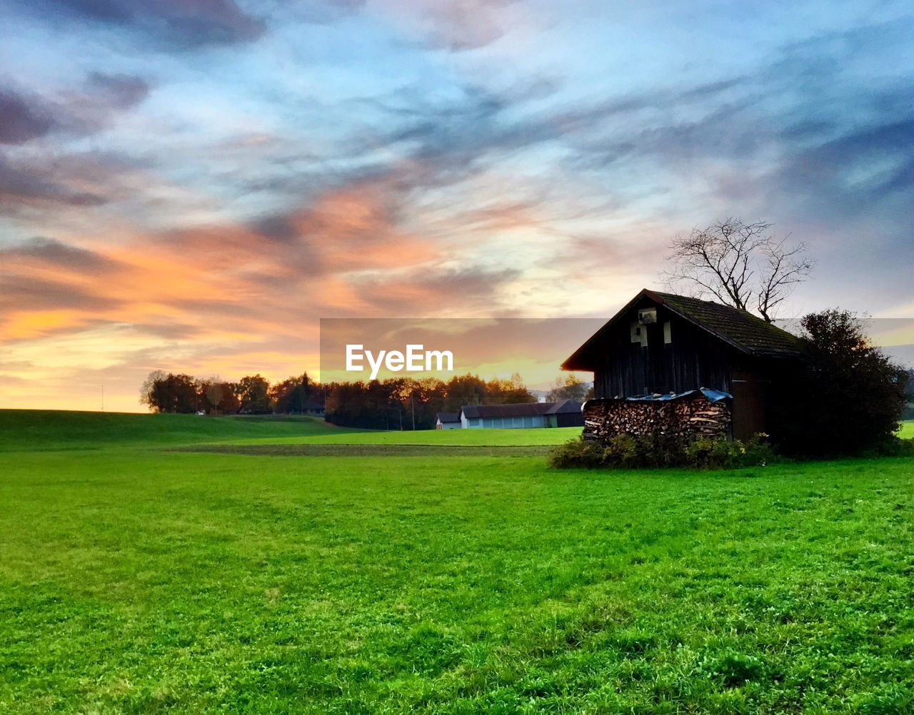 grass, sky, tree, tranquility, landscape, beauty in nature, nature, field, house, no people, tranquil scene, built structure, scenics, sunset, architecture, green color, growth, outdoors, farmhouse, day