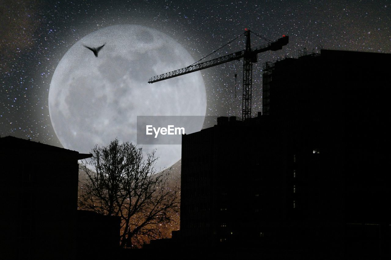 moon, low angle view, night, sky, architecture, silhouette, built structure, outdoors, tree, no people, nature, building exterior, bare tree, bird, half moon, astronomy, beauty in nature, animal themes