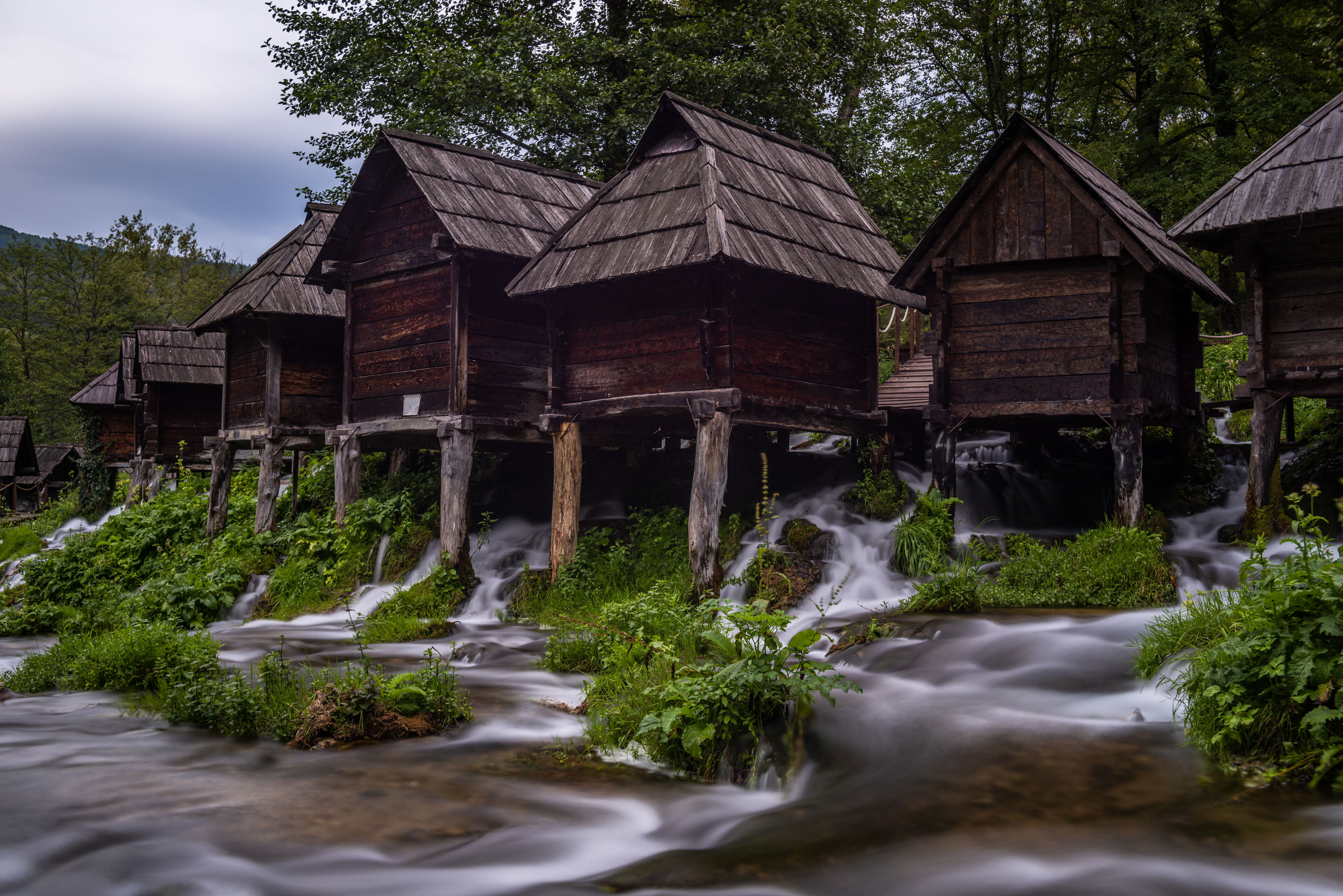 Water flowing by building against trees