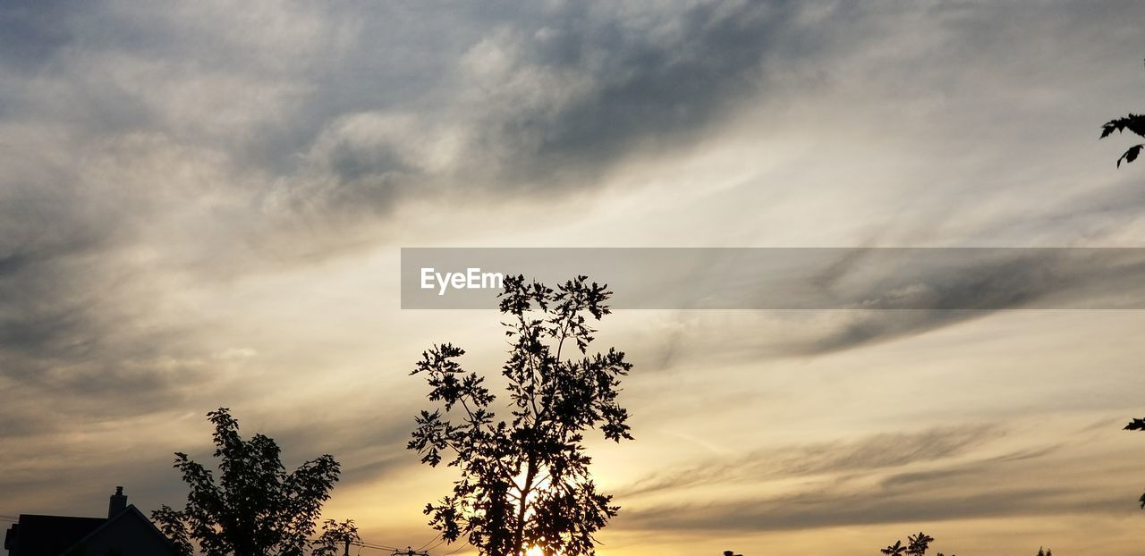 sky, cloud - sky, beauty in nature, tree, sunset, silhouette, plant, tranquility, low angle view, nature, scenics - nature, no people, tranquil scene, growth, outdoors, orange color, idyllic, dusk, overcast