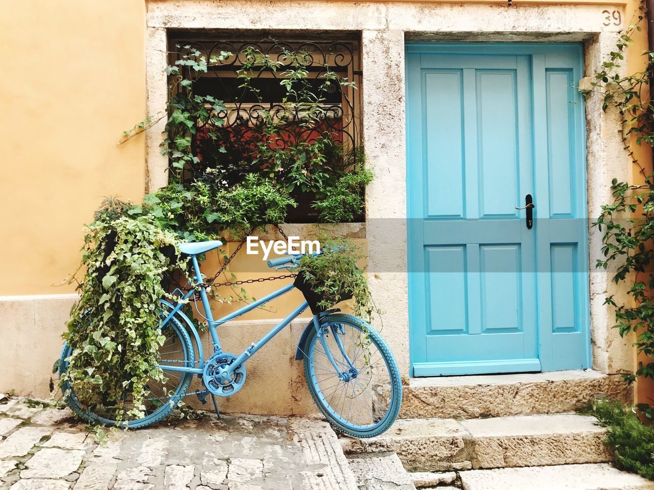 building exterior, architecture, built structure, plant, building, entrance, door, bicycle, house, growth, day, potted plant, nature, no people, window, flowering plant, flower, wall - building feature, outdoors, transportation, window box, flower pot