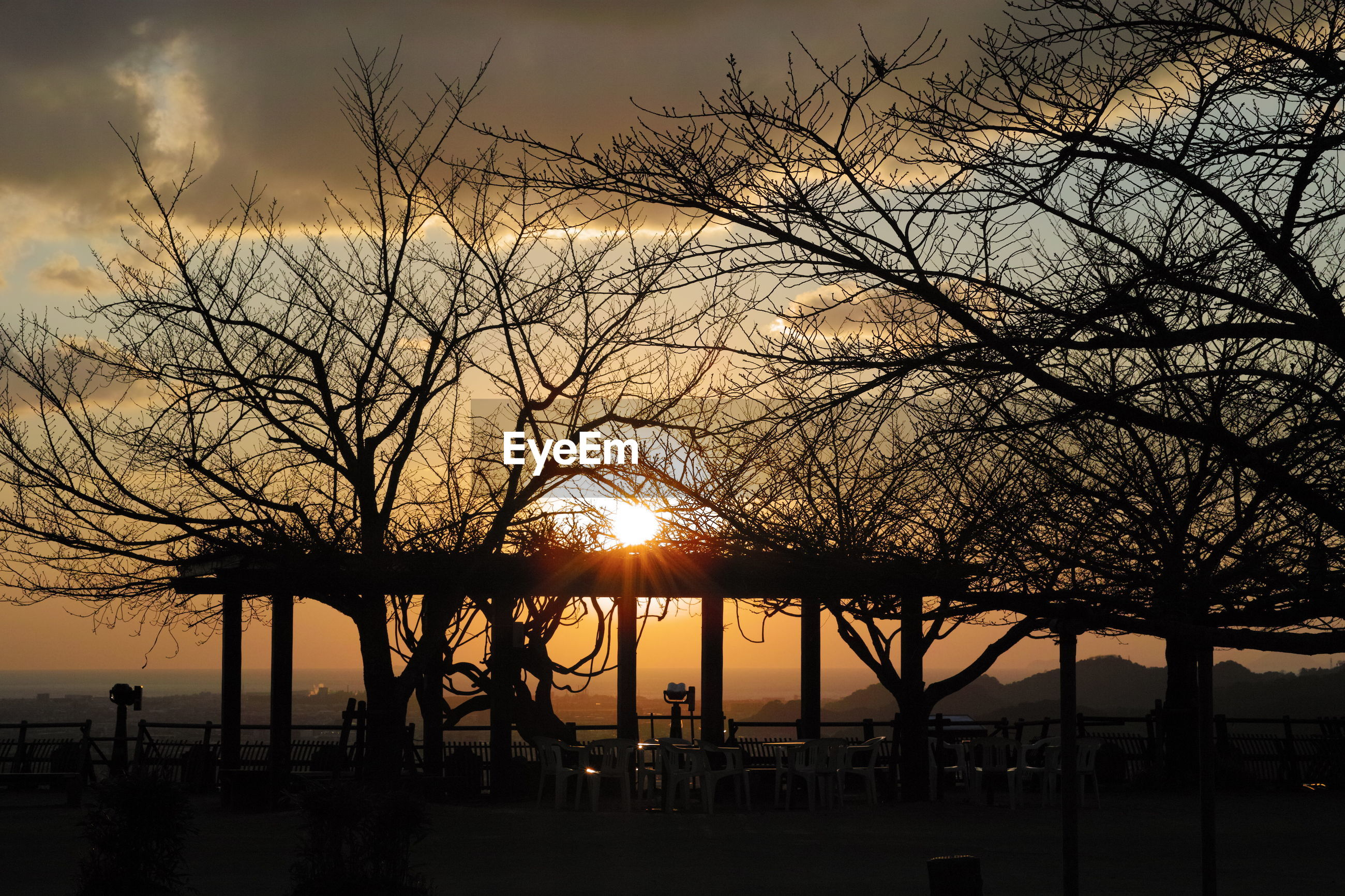 sunset, silhouette, bare tree, tree, sun, sky, scenics, tranquility, tranquil scene, beauty in nature, orange color, branch, nature, water, idyllic, fence, railing, sunlight, outdoors, tree trunk