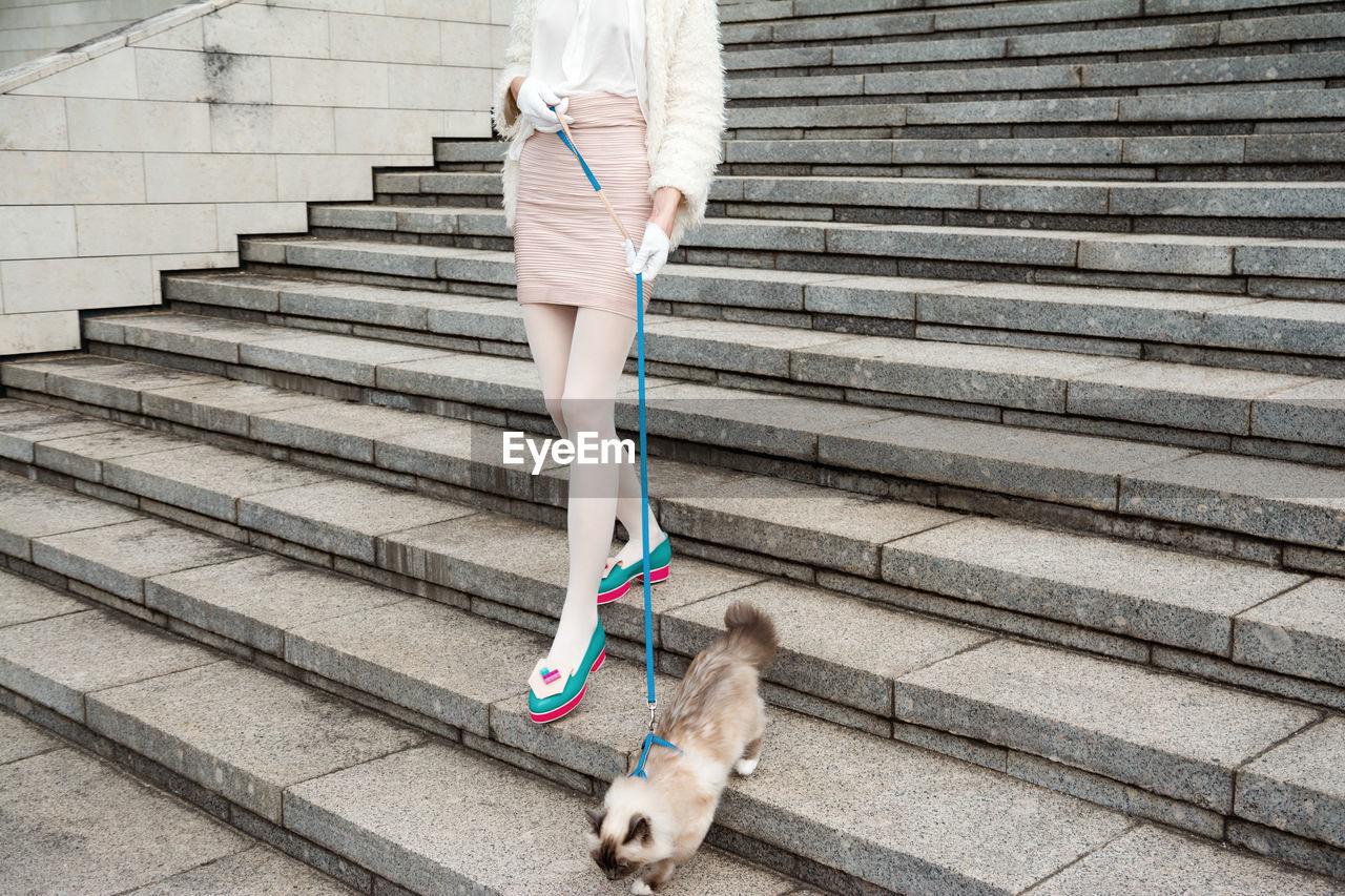 Low Section Of Woman With Cat Walking On Steps