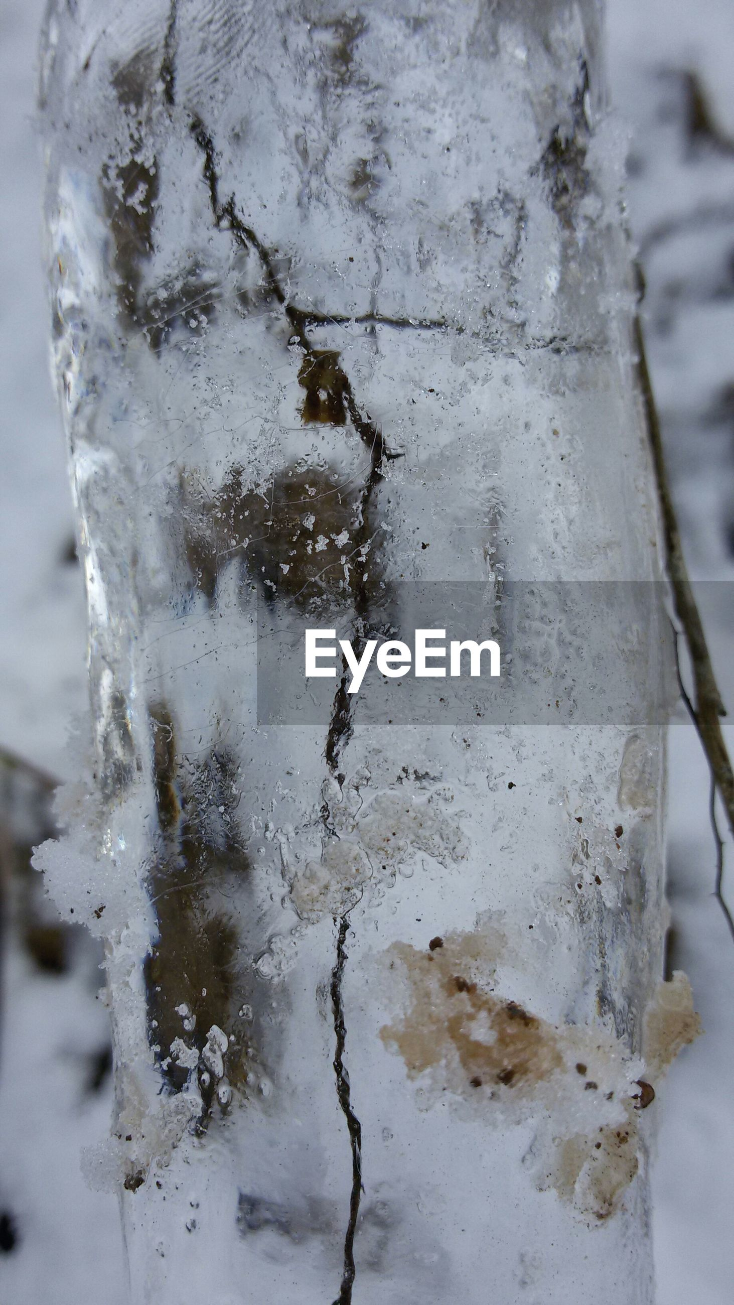 close-up, cold temperature, ice, winter, frozen, water, focus on foreground, snow, nature, weather, drop, wet, season, day, selective focus, no people, outdoors, textured, transparent, fragility