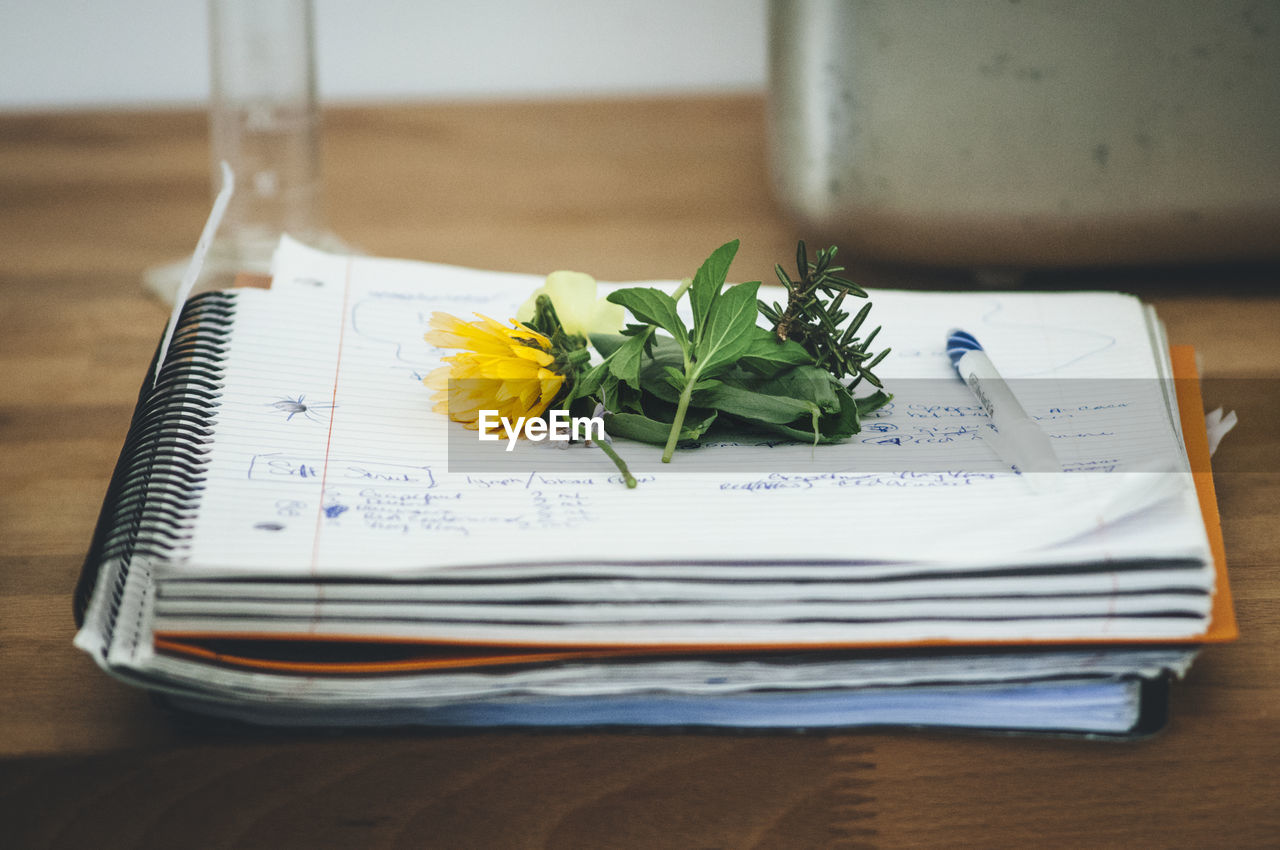 High angle view of flower and leaves on spiral notebook