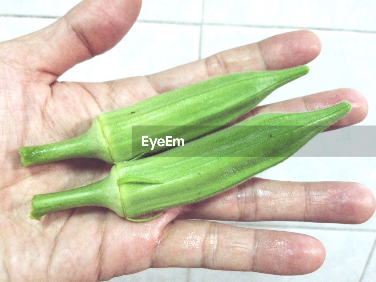 Cropped imaged of person holding okra