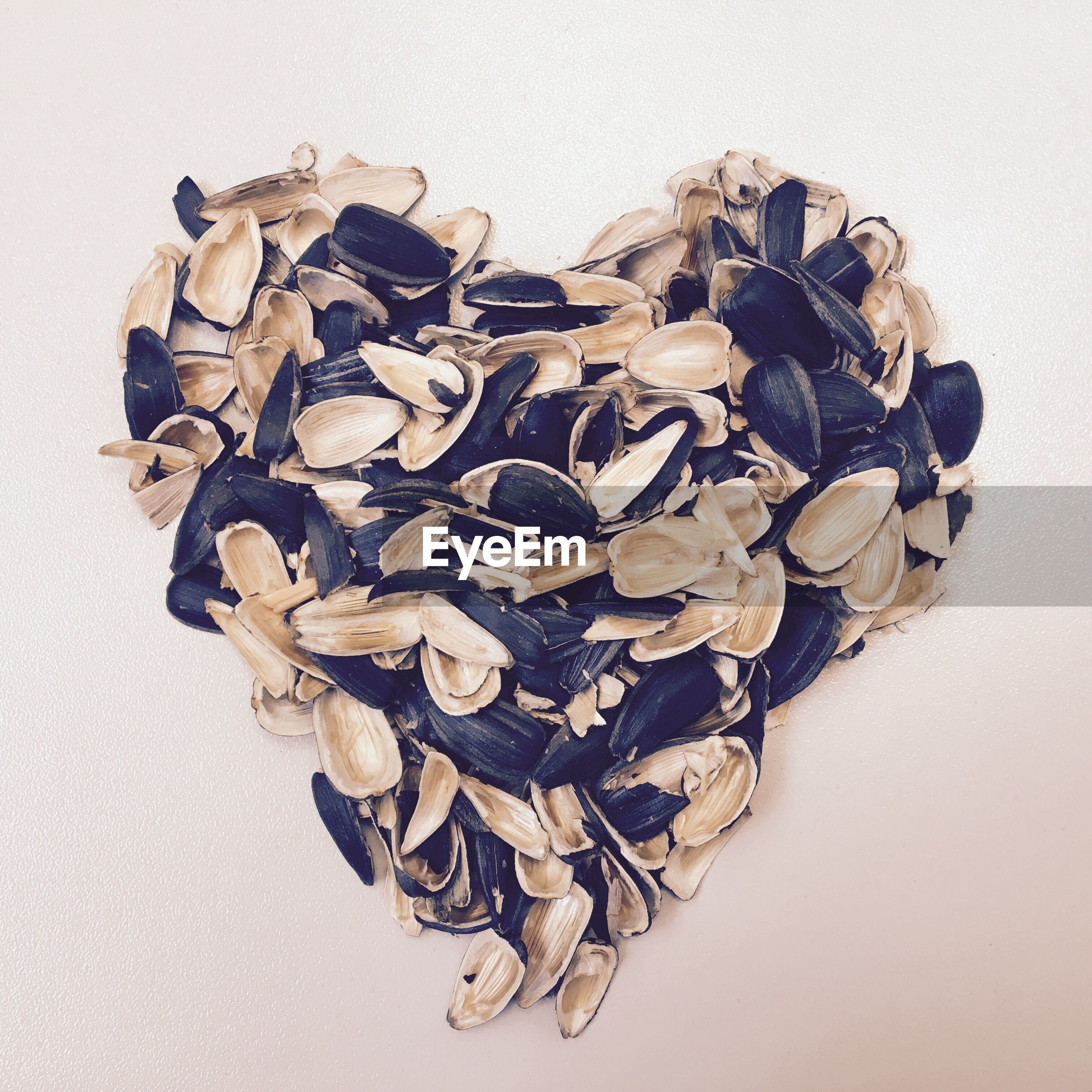 Heart shape formed of mussels on white background