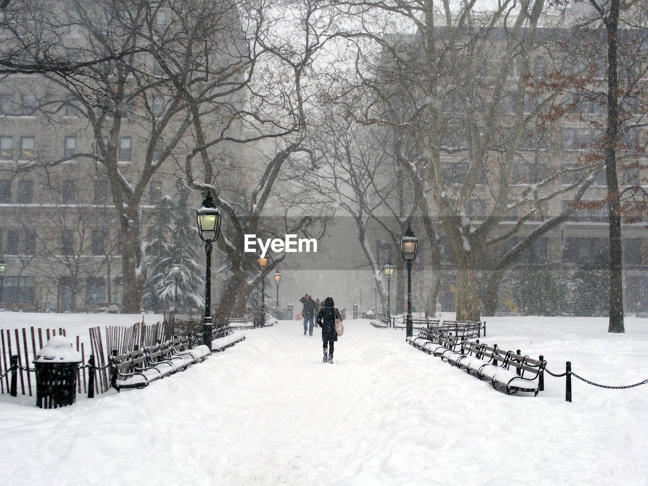 Rear view of person at snow covered park in city