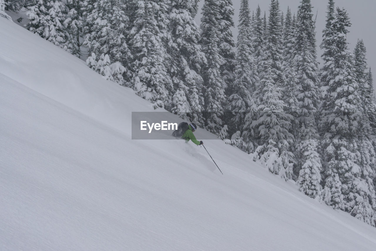 snow, winter, cold temperature, sport, winter sport, leisure activity, skiing, one person, tree, plant, mountain, nature, beauty in nature, day, holiday, unrecognizable person, scenics - nature, travel, outdoors, snowcapped mountain