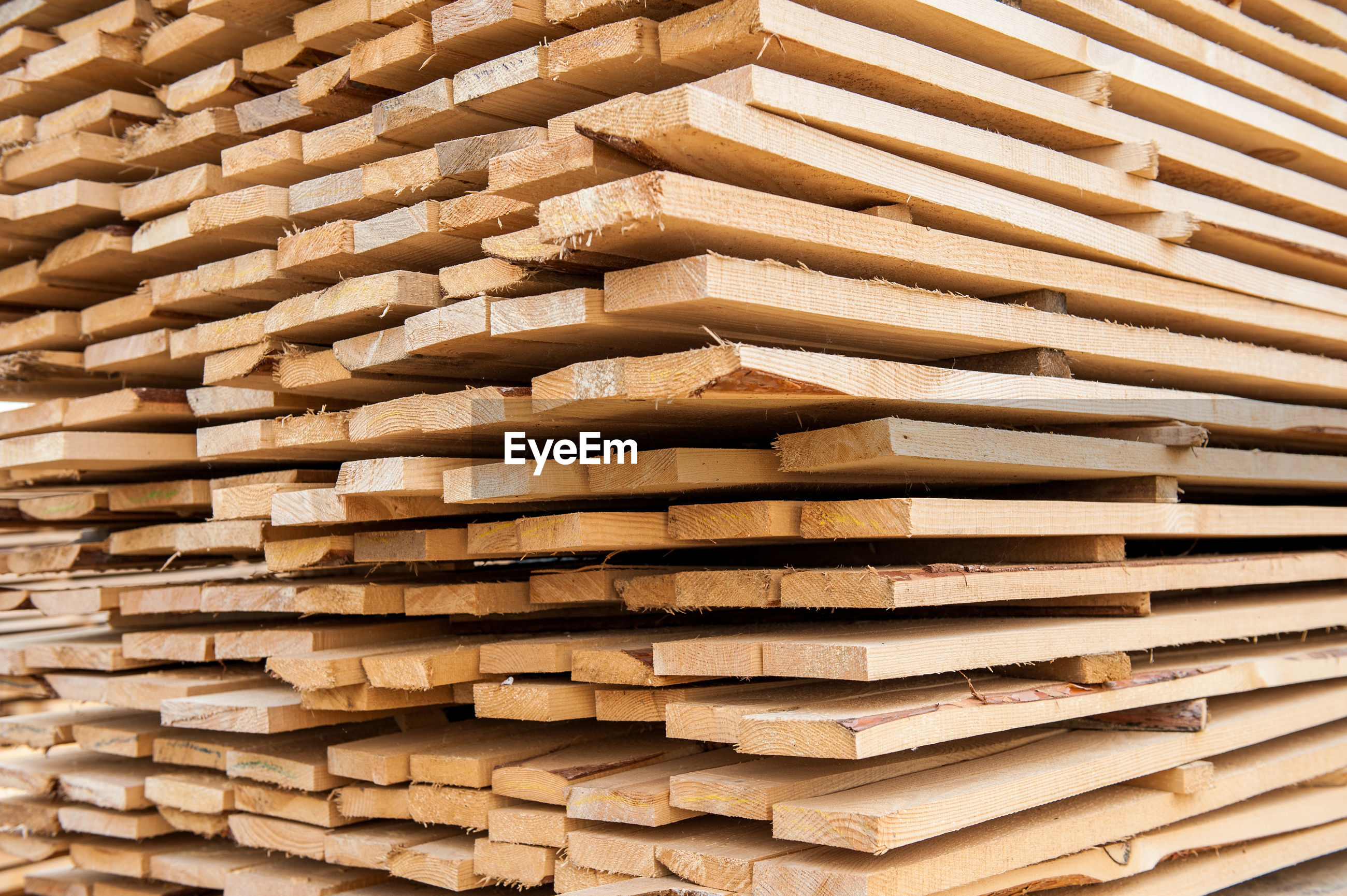 Full frame shot of stack of firewood in forest
