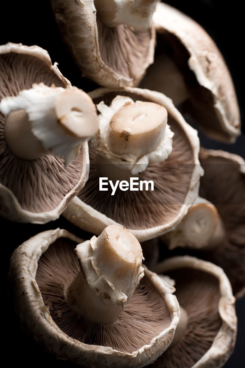 food and drink, mushroom, close-up, food, freshness, no people, fungus, indoors, sweet food, toadstool, day, fly agaric, ready-to-eat