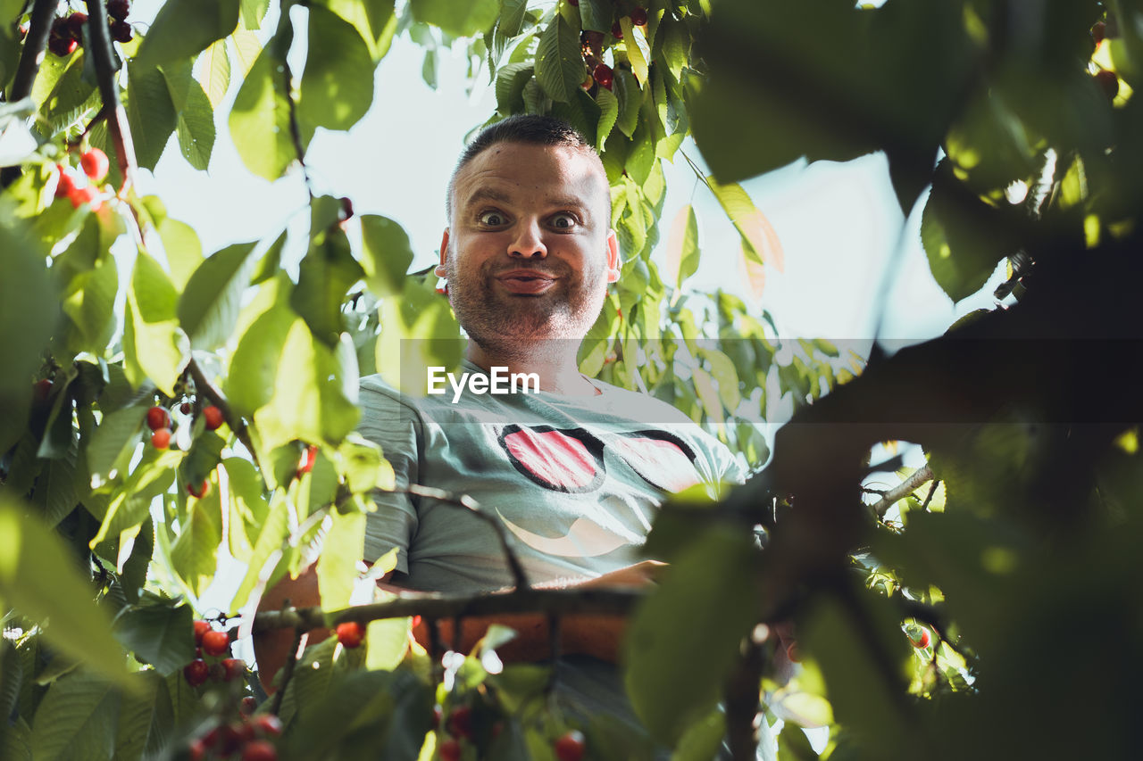 Portrait Of Smiling Man In Tree