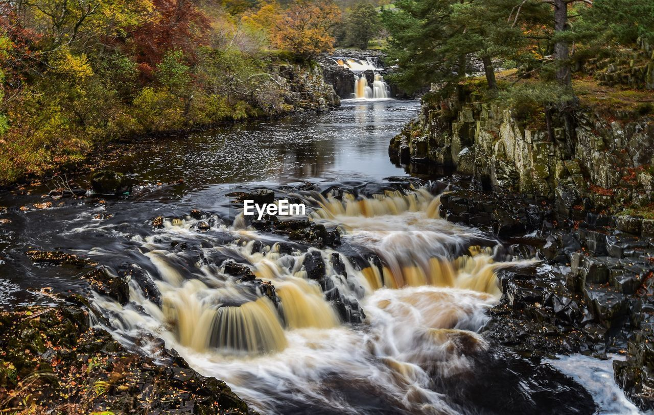 water, motion, flowing water, beauty in nature, long exposure, scenics - nature, river, rock, tree, forest, flowing, rock - object, nature, blurred motion, solid, no people, plant, waterfall, day, stream - flowing water, outdoors, power in nature, running water, pollution