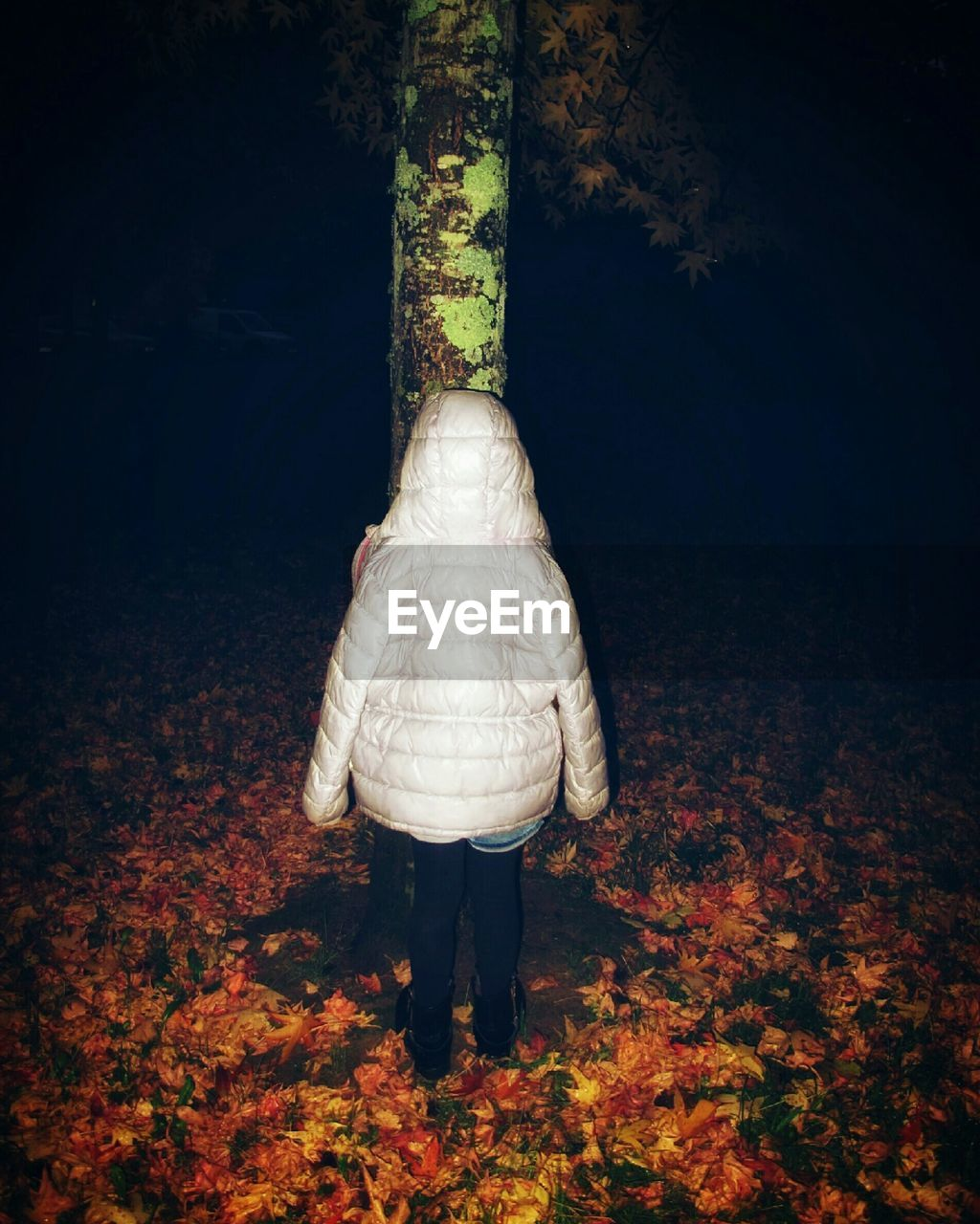 Rear view of child in hood standing against trees during autumn at night