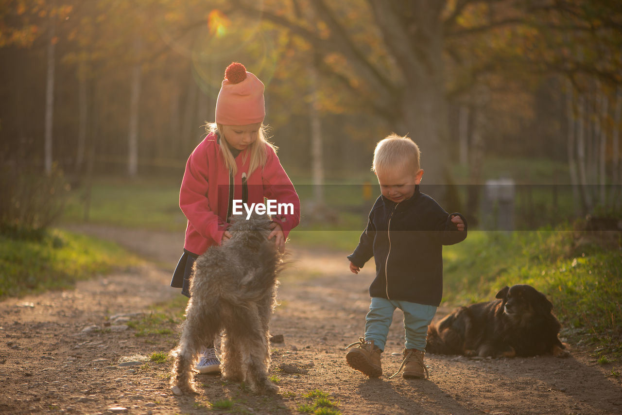 Siblings with dogs on dirt road
