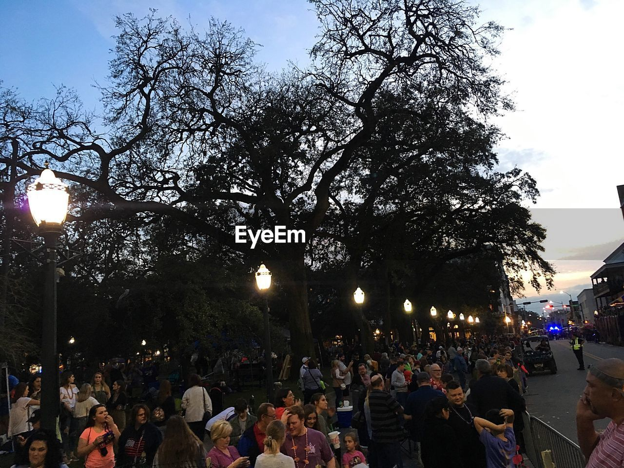 crowd, group of people, large group of people, real people, tree, illuminated, street, city, architecture, men, street light, nature, sky, plant, lighting equipment, women, building exterior, built structure, lifestyles, leisure activity, outdoors, light, festival