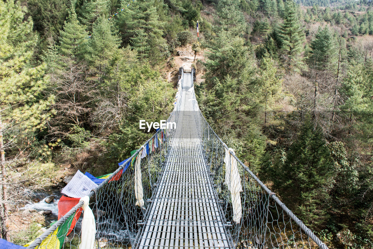 bridge, connection, direction, the way forward, tree, bridge - man made structure, footbridge, architecture, plant, nature, rope bridge, day, built structure, land, forest, transportation, railing, no people, diminishing perspective, rope, outdoors, pine tree