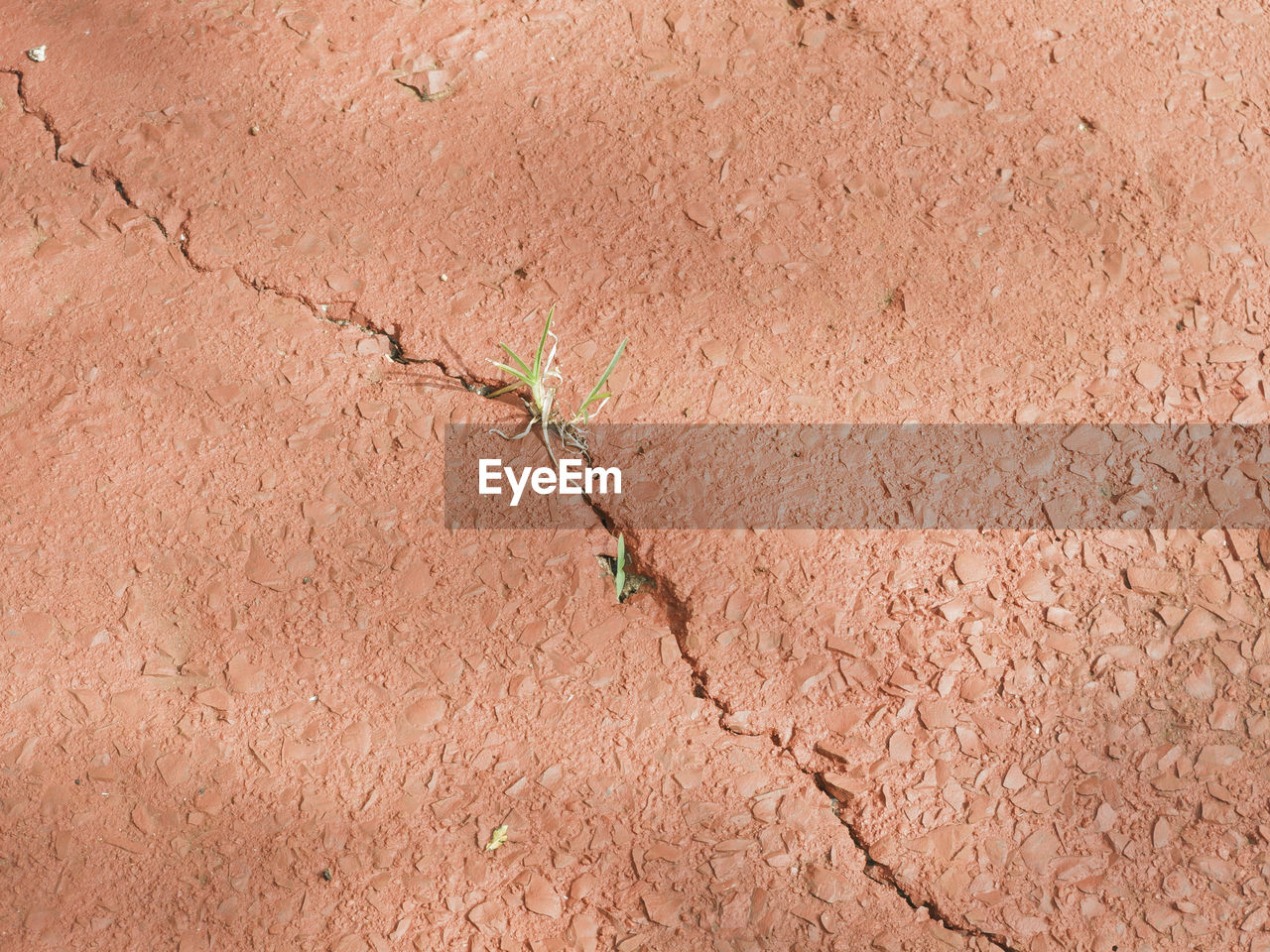 backgrounds, full frame, day, outdoors, no people, textured, arid climate, nature, close-up