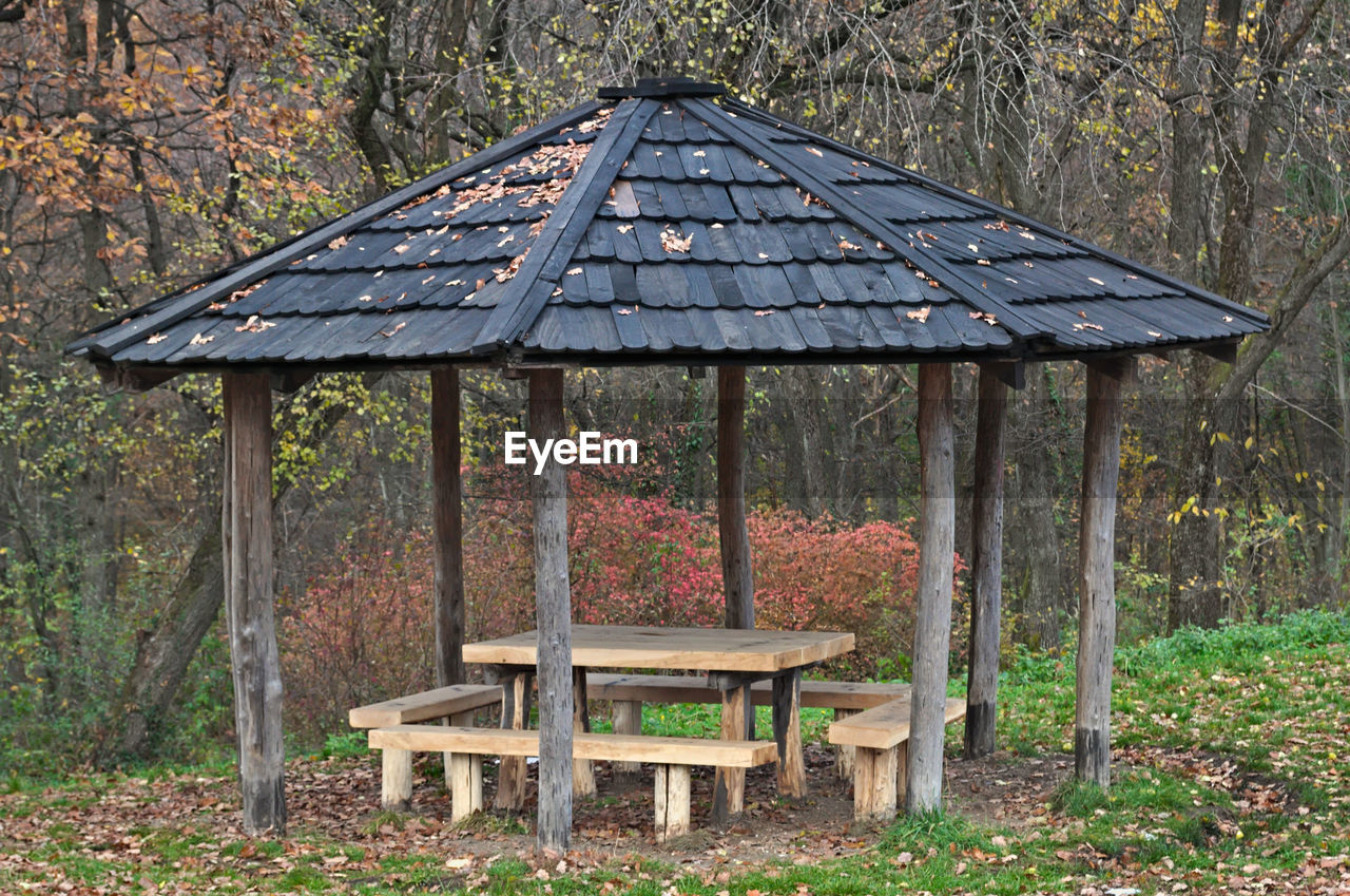 tree, day, no people, land, plant, wood - material, nature, seat, forest, autumn, architecture, bench, outdoors, table, built structure, picnic table, tranquility, roof, field, absence, change