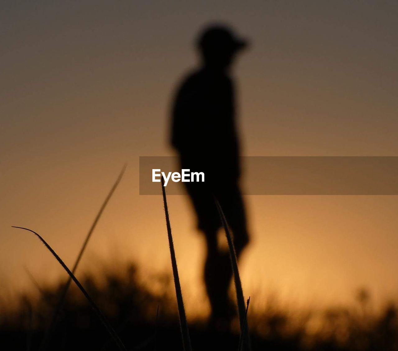 silhouette, sunset, field, nature, one person, outdoors, grass, growth, adults only, men, one man only, adult, sport, real people, only men, sky, people, day