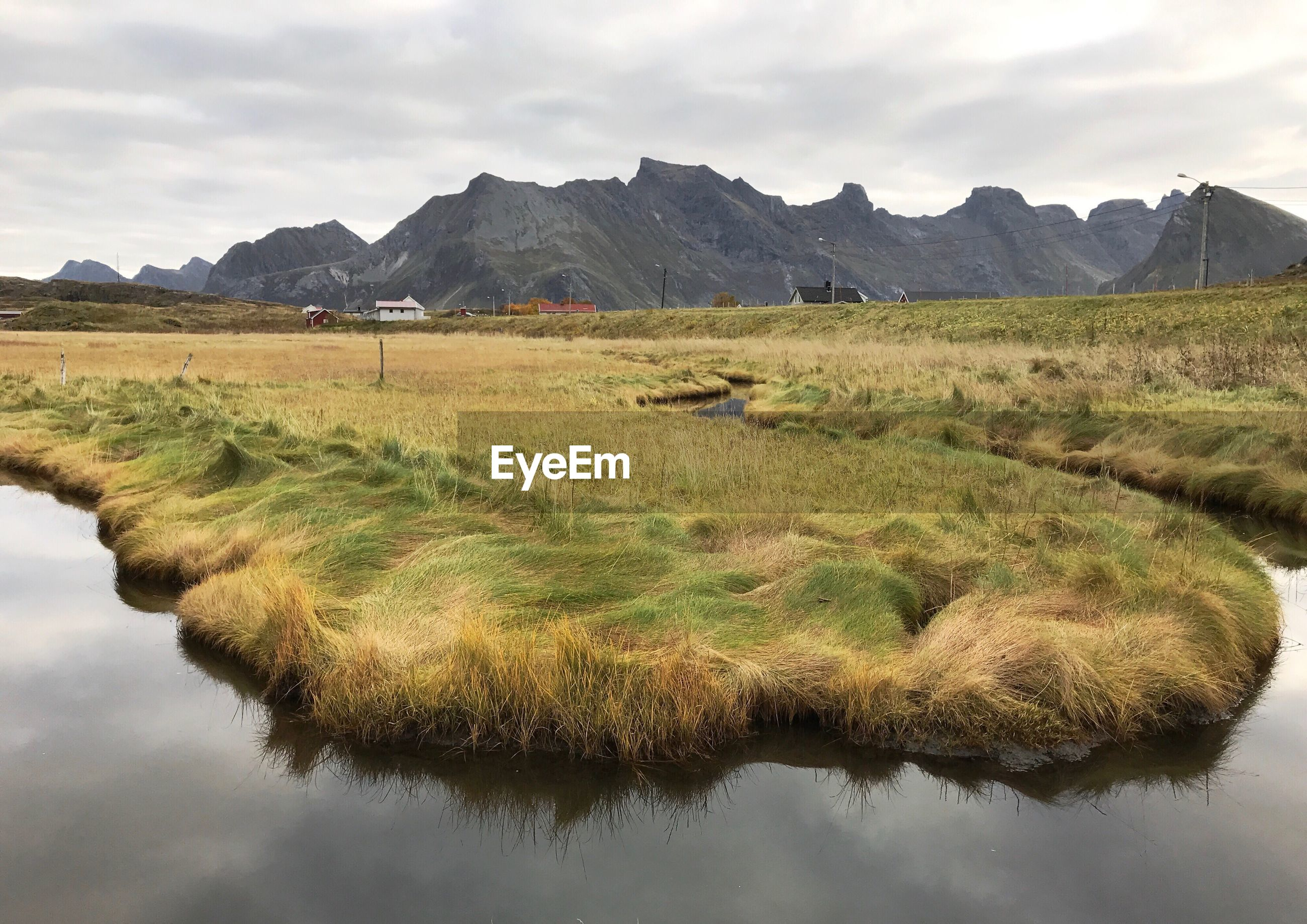 VIEW OF STREAM IN FIELD