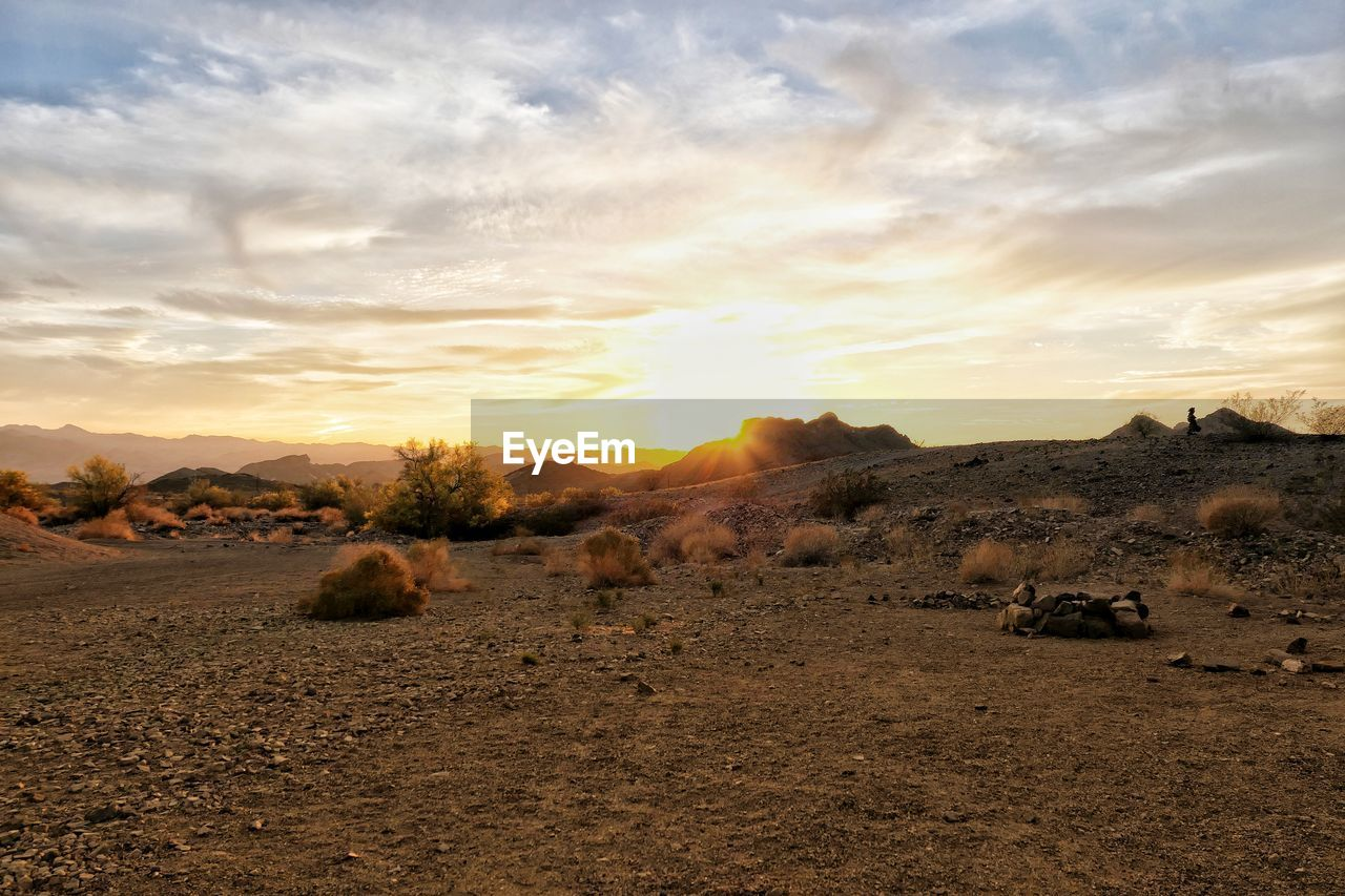 sky, scenics - nature, tranquil scene, beauty in nature, cloud - sky, sunset, environment, landscape, land, tranquility, nature, no people, non-urban scene, field, orange color, idyllic, sunlight, remote, plant, desert, outdoors, climate, arid climate