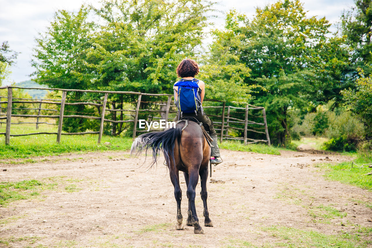 FULL LENGTH REAR VIEW OF A HORSE RIDING