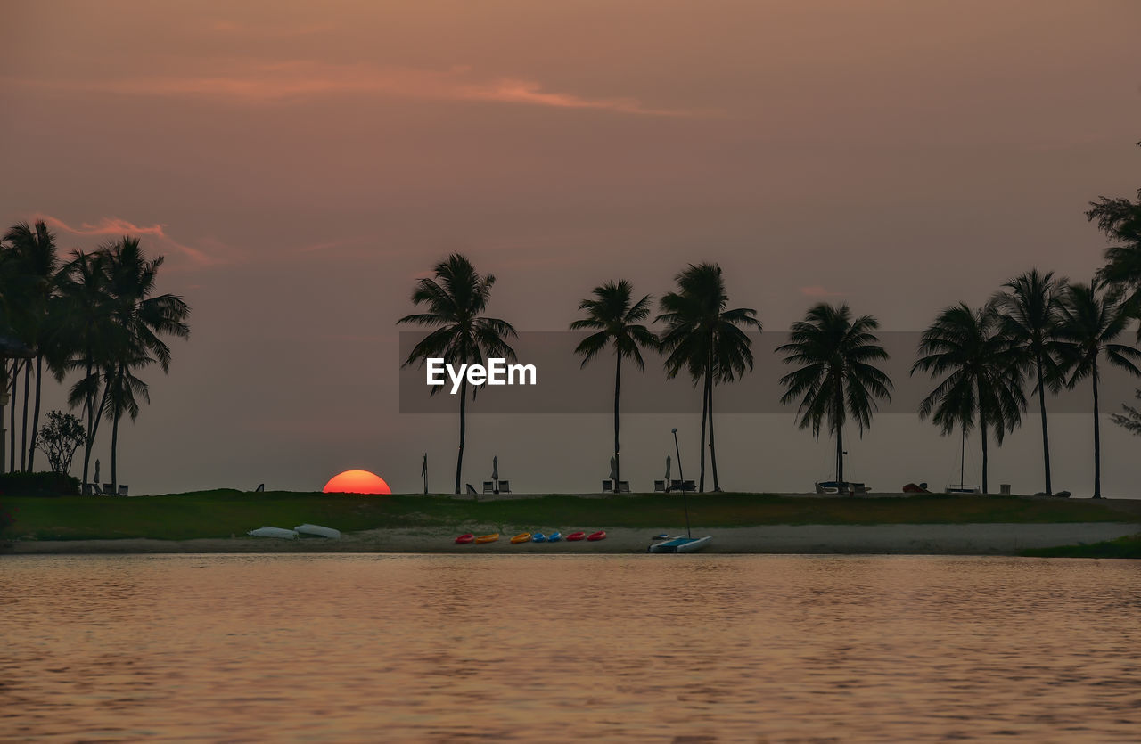 sunset, water, palm tree, tree, orange color, sky, beauty in nature, scenics, nature, no people, outdoors, sea, tranquility, nautical vessel, day