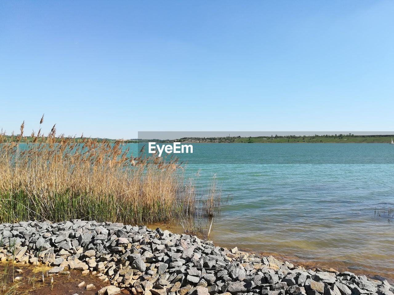 sky, water, clear sky, copy space, tranquility, scenics - nature, beauty in nature, nature, tranquil scene, plant, rock, no people, day, solid, grass, rock - object, land, non-urban scene, blue, outdoors, pebble
