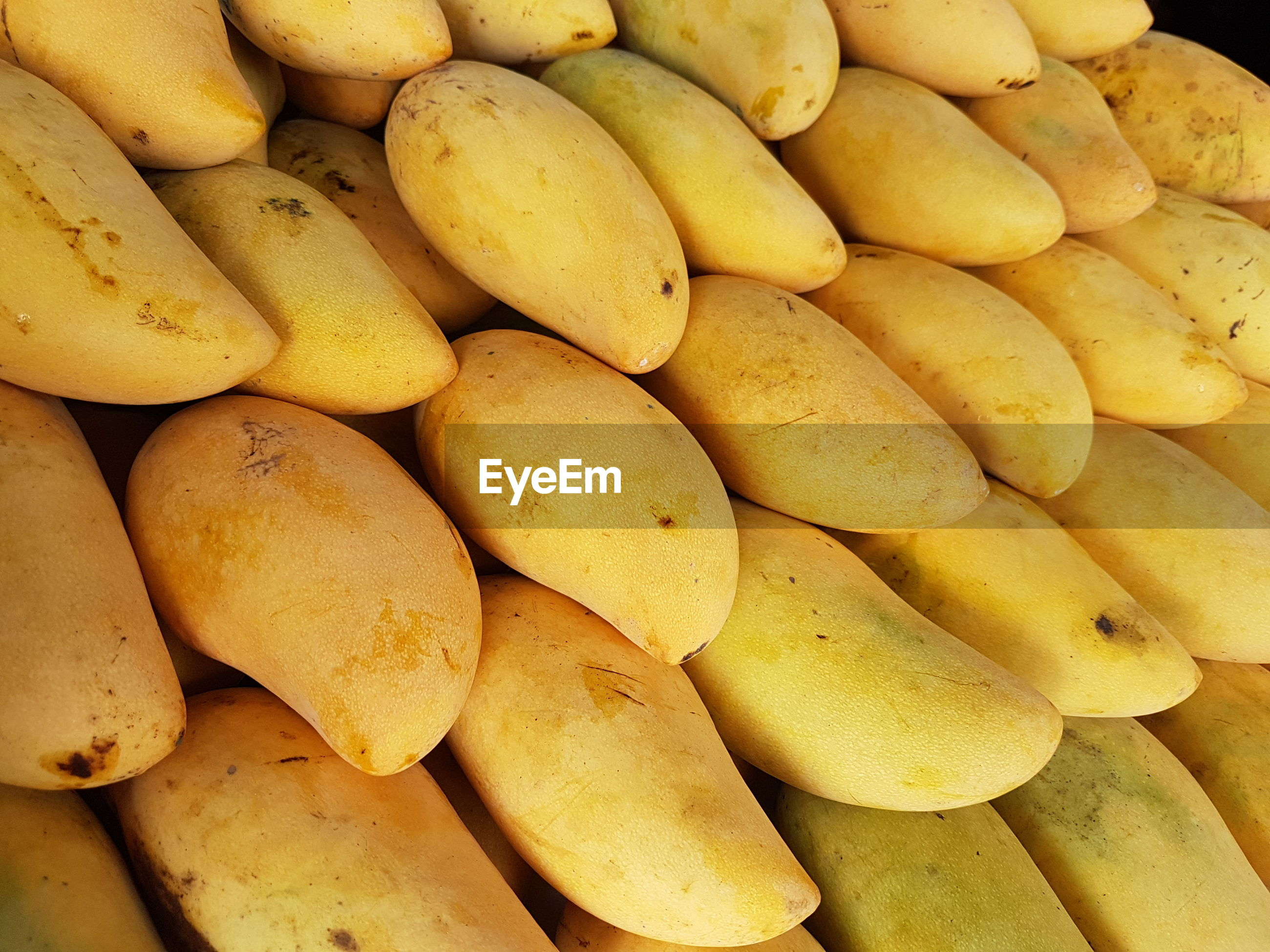 Ripe mango pile