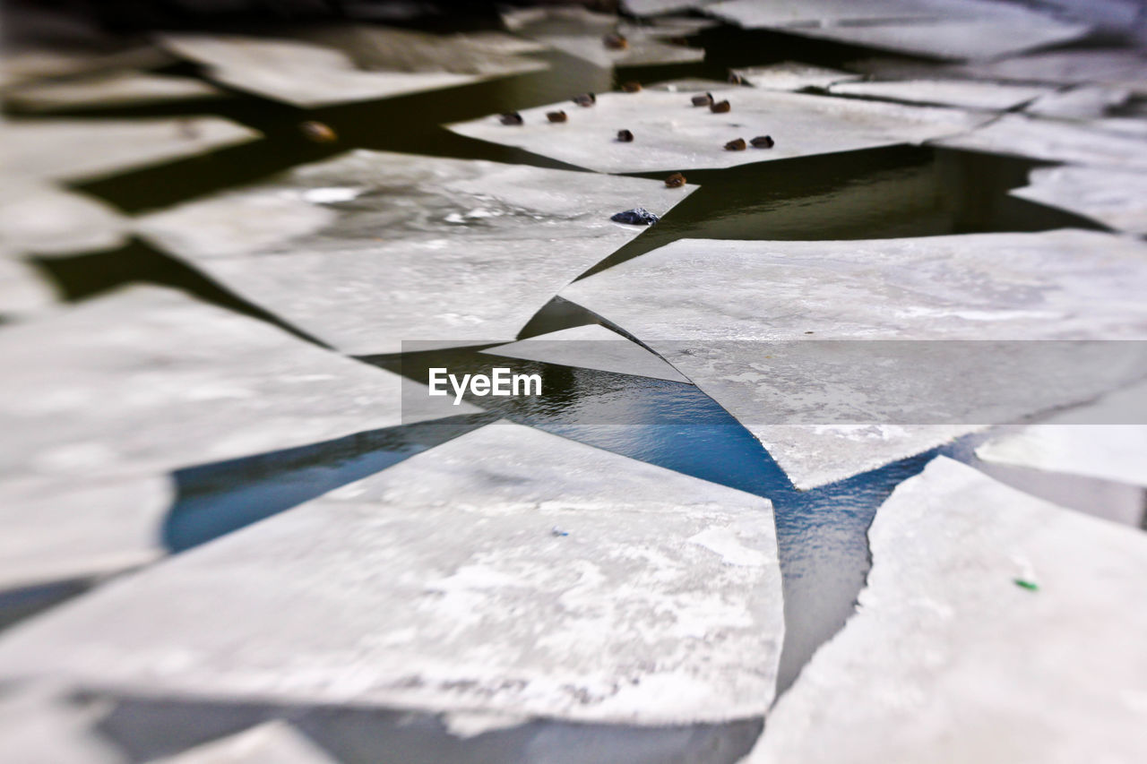 Tilt Shift Image Of Birds On Frozen Ice In Lake