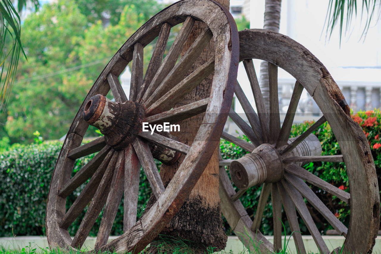 wheel, wagon wheel, wood - material, day, tree, no people, transportation, cart, plant, focus on foreground, obsolete, outdoors, field, nature, abandoned, old, land, run-down, decline, deterioration
