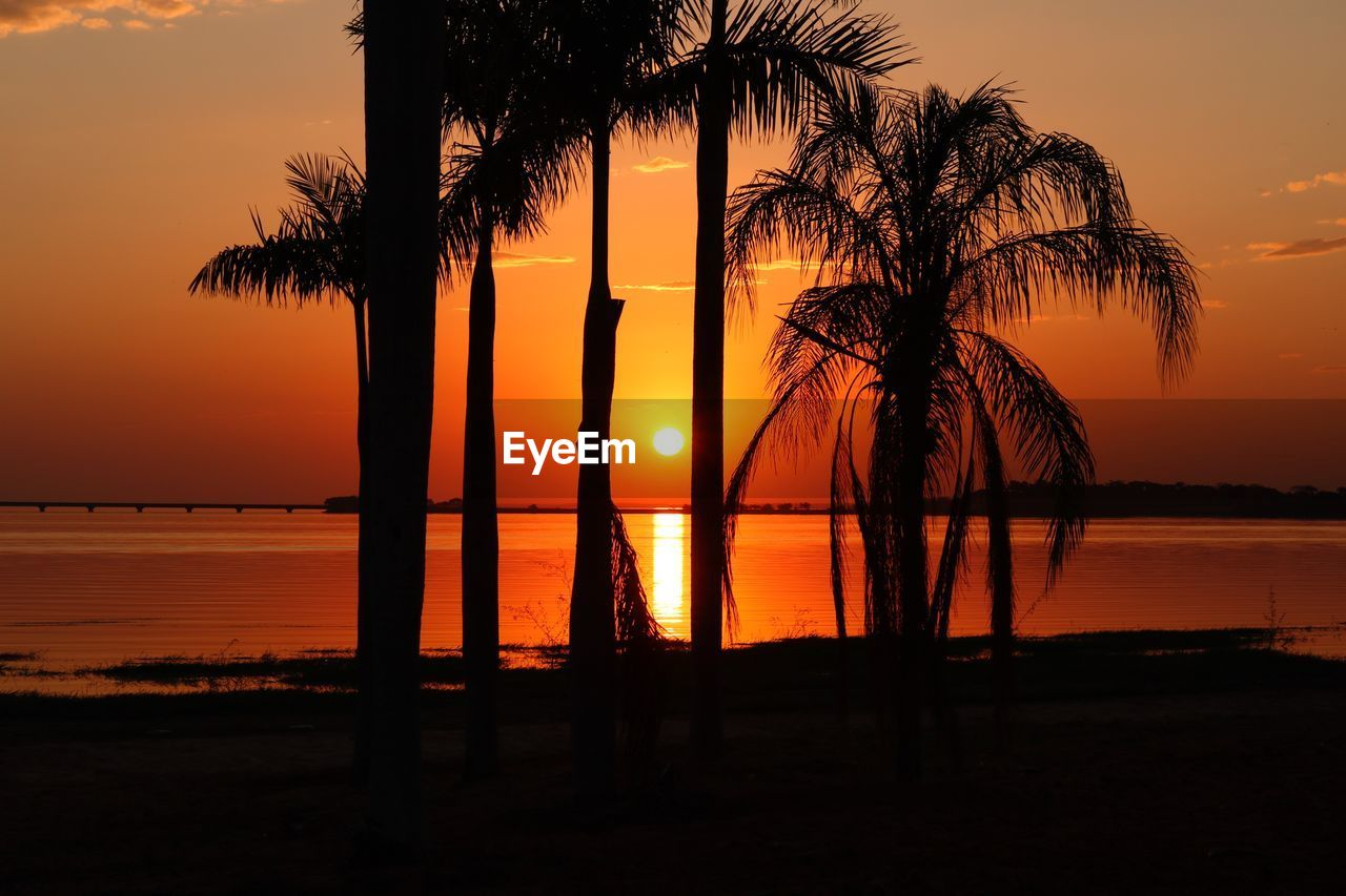 sunset, water, sky, tree, orange color, silhouette, palm tree, scenics - nature, beauty in nature, tranquility, tropical climate, tranquil scene, beach, sea, plant, nature, reflection, idyllic, no people, horizon over water, outdoors, coconut palm tree, palm leaf
