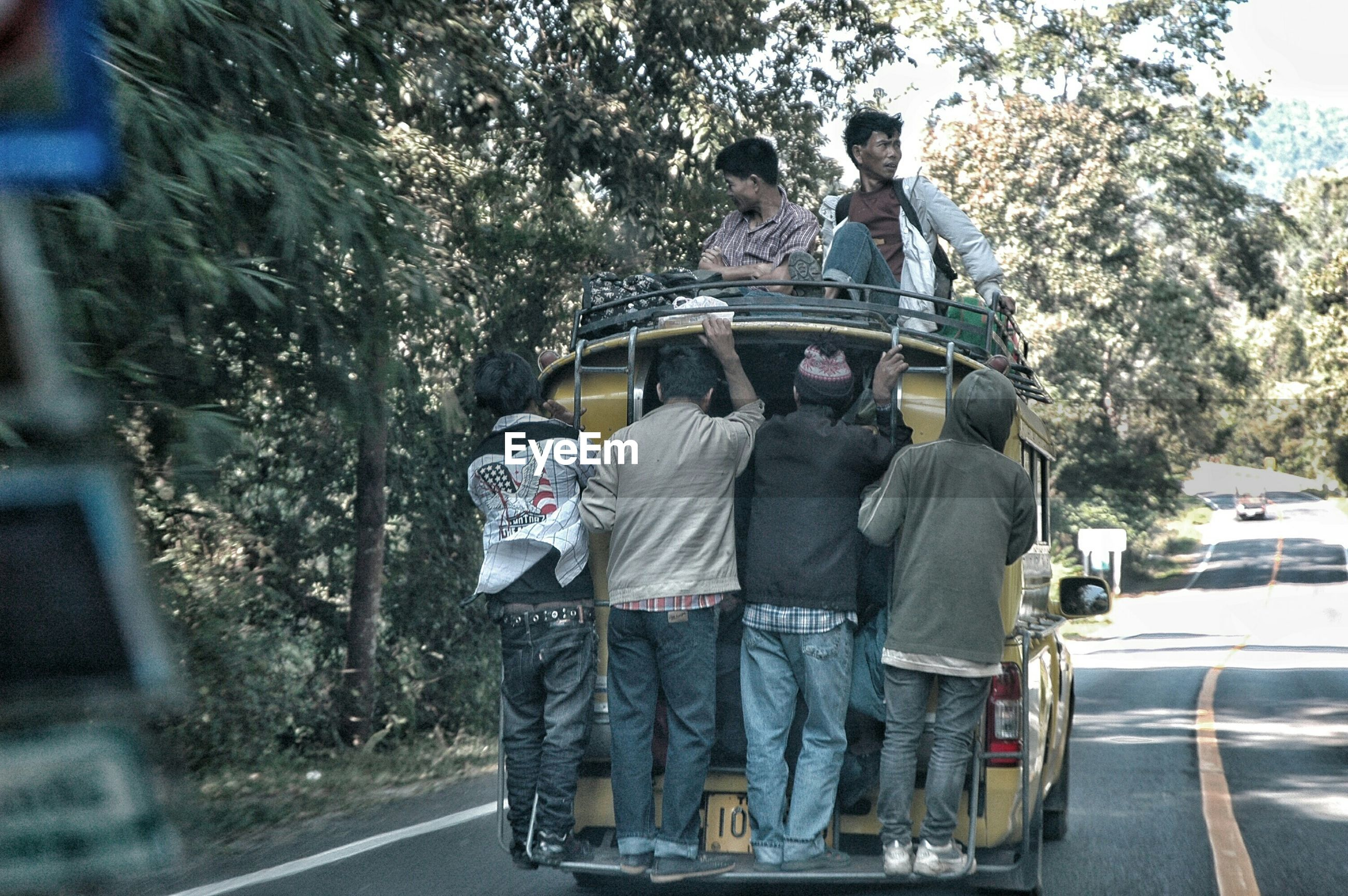 transportation, mode of transport, land vehicle, car, rear view, street, men, road, lifestyles, tree, travel, leisure activity, on the move, riding, bicycle, person, full length, incidental people