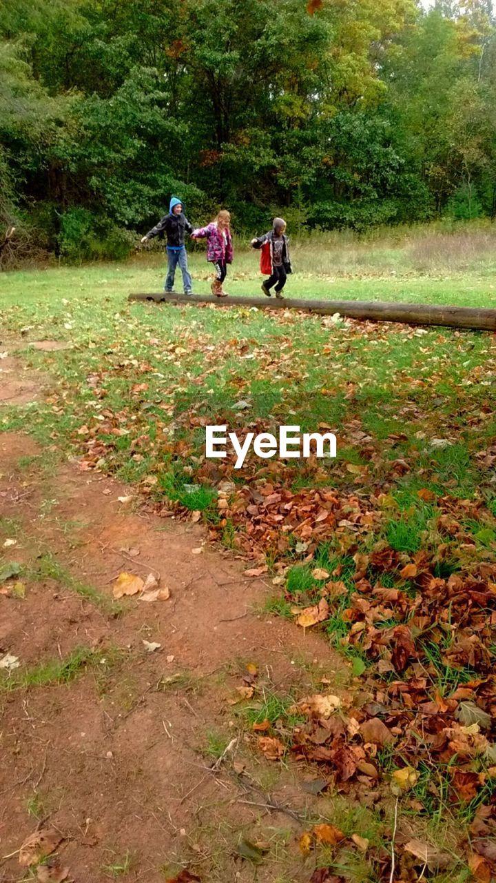 Mid Distance View Of Siblings Walking On Tree Trunk On Field