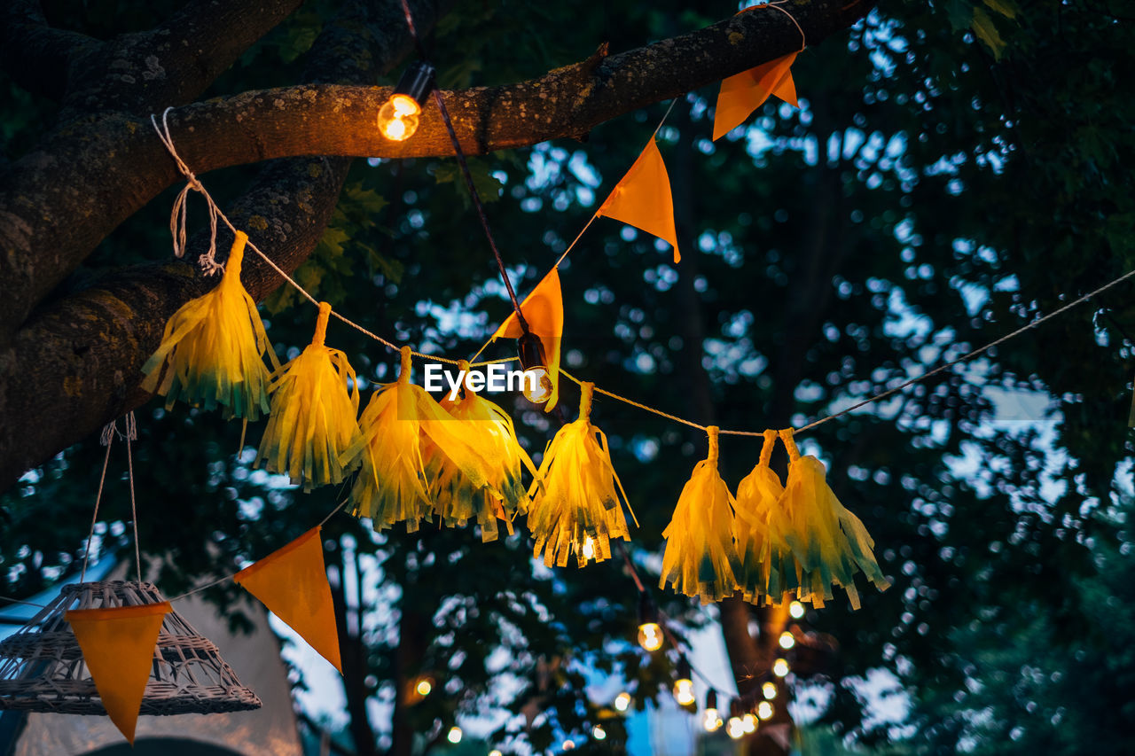 Low Angle View Of Bunting Hanging From Tree