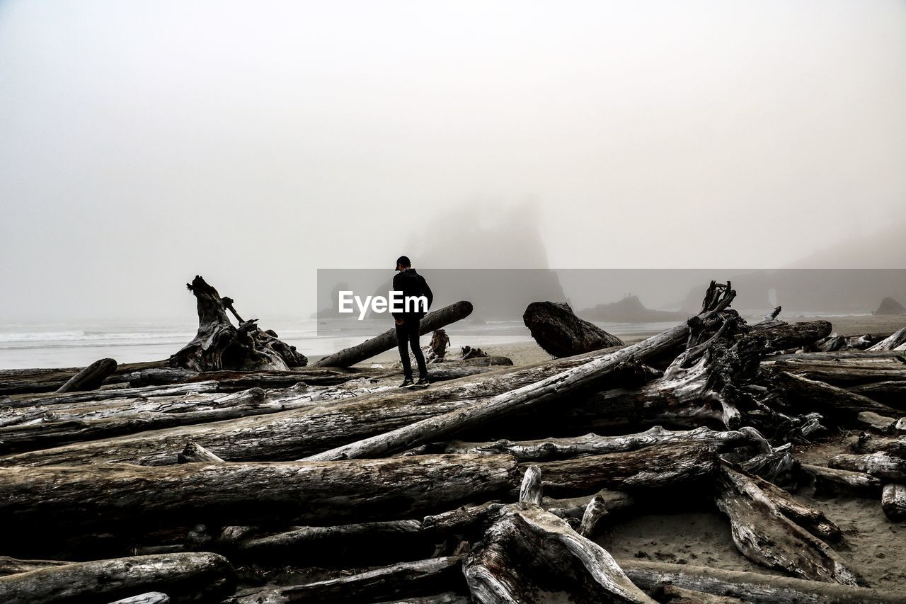 sky, real people, nature, fog, wood, land, men, day, wood - material, timber, log, tranquil scene, full length, tranquility, leisure activity, non-urban scene, lifestyles, outdoors, beauty in nature, driftwood